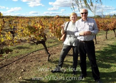 Swan Valley Tours 3