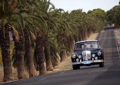 Barossa Daimler Tours