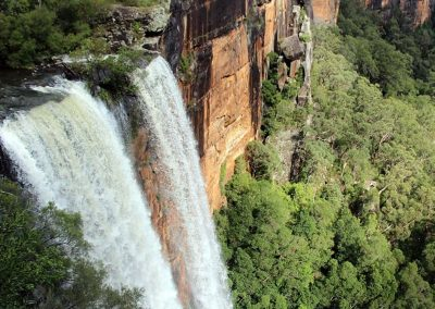 Coast to Country at Fitzroy Falls