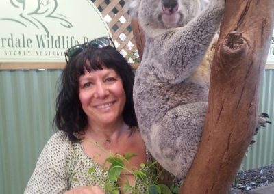 Get up close to a cuddly koalas