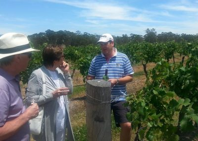 Visit the Hunter Valley with Real Sydney Tours
